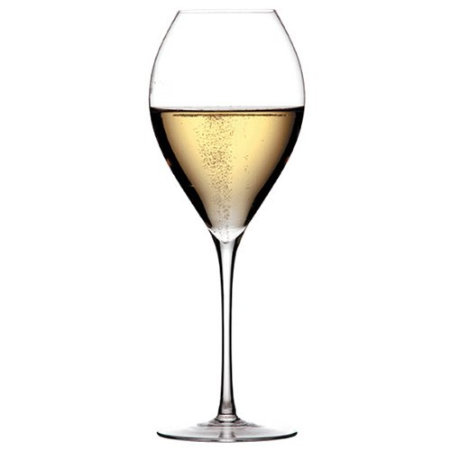 LEHMANN GLASS Grand Champagne Champagnerglas Mundgeblasen