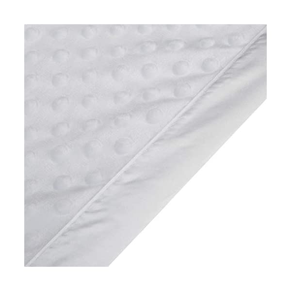 Pro Goleem Baby Soft Minky Dot Blanket with Silky Satin Backing Gift for Boys and Girls (White, 30'' x 40'')