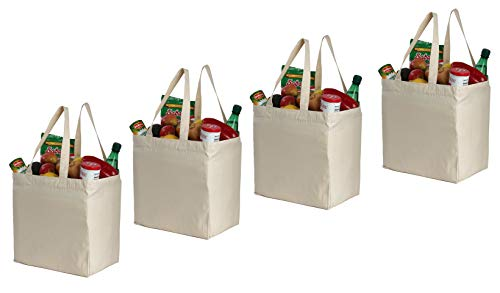 Earthwise Cotton Canvas Reusable Shopping Grocery Bag Tote 4 Pack Natural