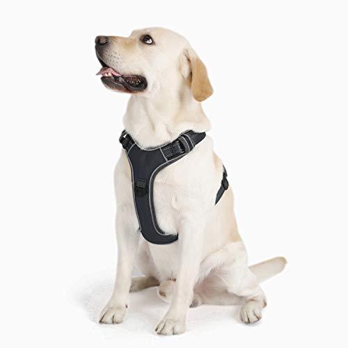 PETTOM Hund Geschirr Weich Hundegeschirr für Kleine Mittelgroße und Große Hunde(Schwarz/Grün/Blau/Rosa/Orange,XL)
