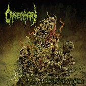 From Past Suffering Comes New by Dysentery (2009-11-19)