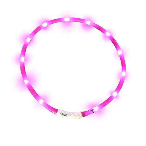 Case Wonder LED Leuchthalsband Hunde Halsband - USB Wiederaufladbar - Längenverstellbarer Haustier Sicherheit Kragen / Blinkende Kragen Deluxe für Hunde und Katzen- 3 Lights Mode & 8 Farben (Lila)