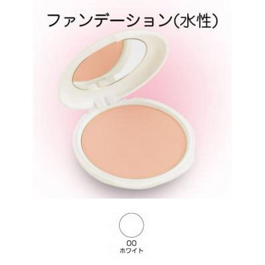 組付属品専制ツーウェイケーキ 28g 00ホワイト 【三善】