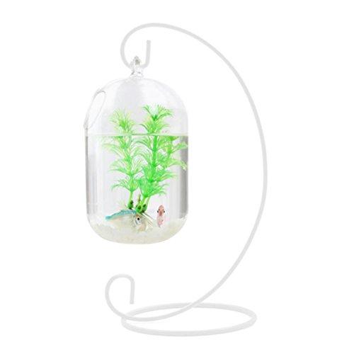 WINOMO 15Zentimeter ausgesetzt Anhänger Transparent-Glas-Fisch Tank-Infusion Flasche Aquarium Blume Pflanze vase vase von Blumen für die Dekoration Heim (nur einschließlich der Schale von Glas)