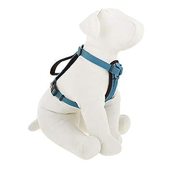 kong comfort dog harness