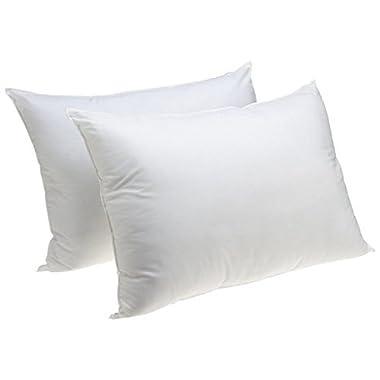 Standard Size Bedding Pillow Hypoallergenic Jumbo Sham Stuffer Pillow, Set of 2
