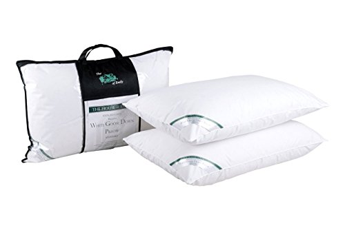 The House of Emily 2-Pack 100 Percent Hungarian White Goose Down 20 x 30...