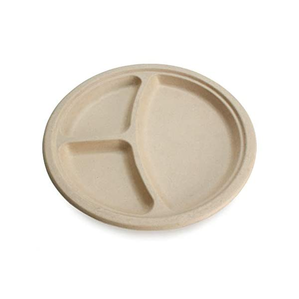 """Earth's Natural Alternative Eco-Friendly, Natural Compostable Plant Fiber 10"""" 3-Compartment Plate, Natural, 20 Count"""