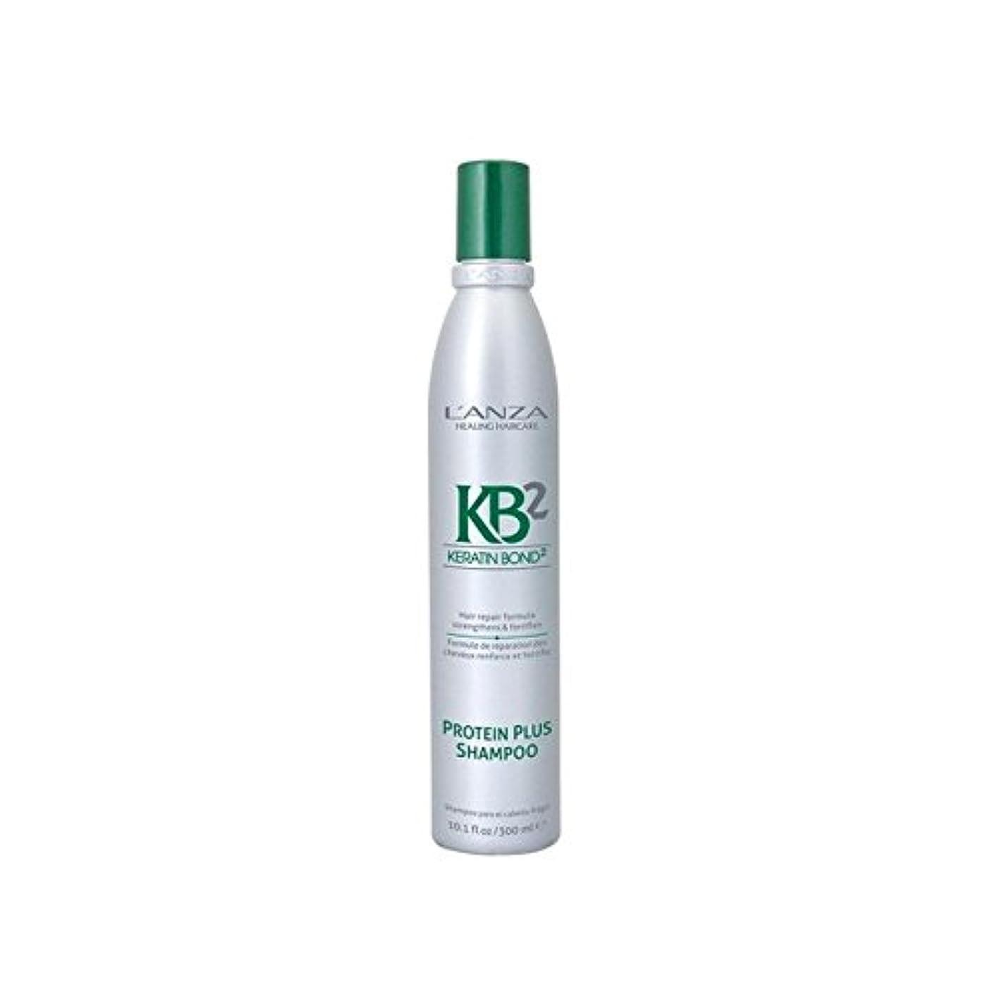 米国セッティング法王L'Anza Kb2 Protein Plus Shampoo (300ml) (Pack of 6) - アンザ2タンパク質プラスシャンプー(300ミリリットル) x6 [並行輸入品]