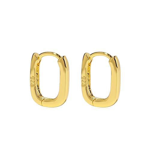 Elegante regalo de moda mujeres hombres joyas geométricas minimalistas pendientes de aro gruesos aros EarStud(9)