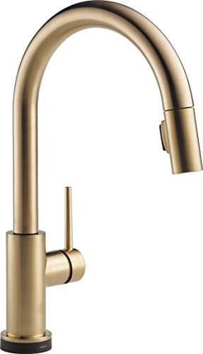 DELTA Trinsic VoiceIQ Single-Handle Touch Kitchen Sink Faucet with Pull Down Sprayer, Alexa and Google Assistant Voice Activated, Smart Home, Champagne Bronze 9159TV-CZ-DST