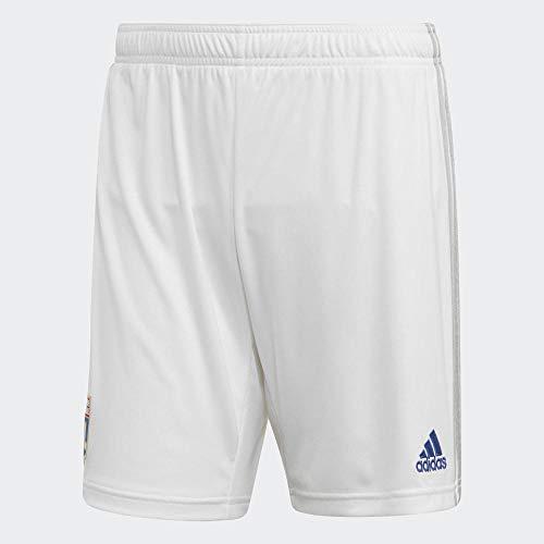 Olympique Lyonnais Short Training Teck Blanc Adulte