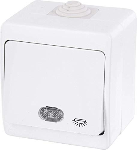 Aufputz Feuchtraum Taster mit Licht-Symbol + LED-Beleuchtung IP54 - All-in-One - Rahmen + Einsatz + Abdeckung (Serie G1 reinweiß)