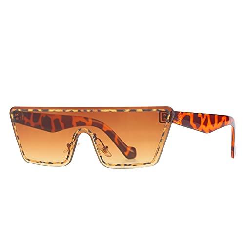 JIYANANDPNTYJ Gafas De Sol Mujer Gafas de Sol de la máscara de Ojo de Gato Damas Ordenador Personal Lente Degradado de Marco Gafas de Sol Casuales Retro Retro (Lenses Color : Leopard)