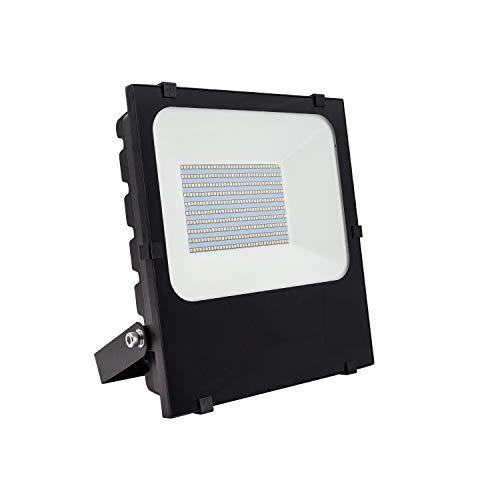 Foco Proyector LED 50W HE PRO Regulable Blanco Cálido 2800K - 3200K