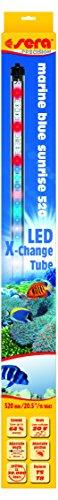 sera LED marine blue sunrise 520 mm / 13 W