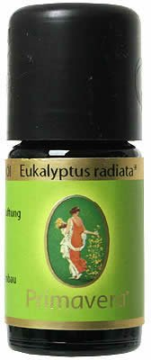 PRIMAVERA Ätherisches Öl Eukalyptus radiata bio 5 ml - Aromaöl, Duftöl, Aromatherapie - stärkend, befreiend, bakterienfeindlich - vegan