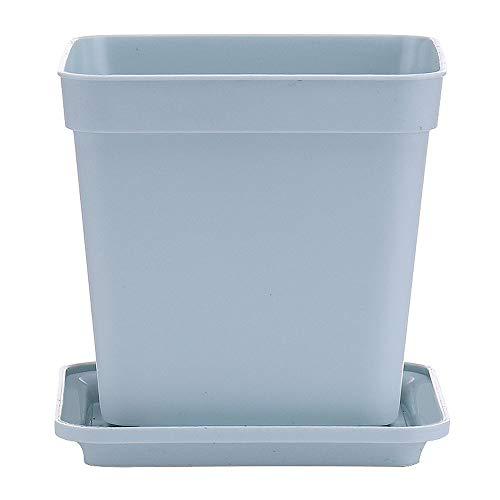 XHZJ Pot de Fleur charnu créatif carré en Plastique juteux Grand diamètre Pot de Pouce Petit carré Noir avec Plateau décoration de Bureau Pot de Fleur Blanc juteux (Color : Cyan)
