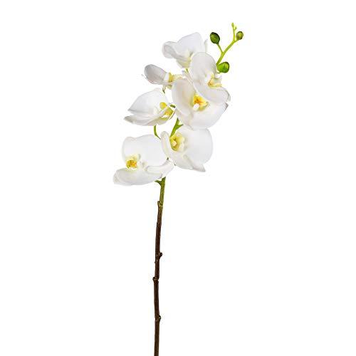 creativ home Kunstblume PHALENOPSIS, ORCHIDEENZWEIG 69 cm. Künstliche Orchidee mit Real Touch Oberfläche. (Weiss -40)
