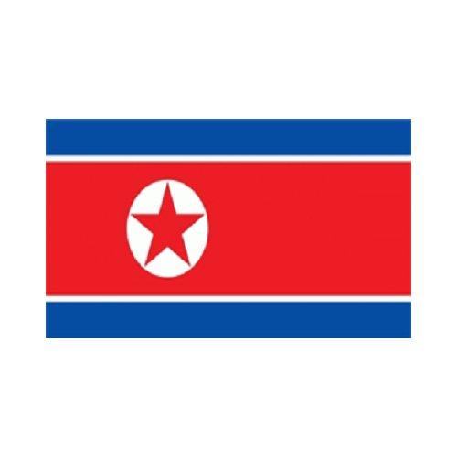 Nordkorea Fahne (L40)
