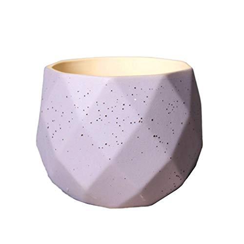 HEELPPO Macetas Pequeñas Macetas Ceramica Planta de Interior Macetas Macetas Grandes para Plantas al Aire Libre Pote de Flor Pequeña Planta de Marihuana Purple
