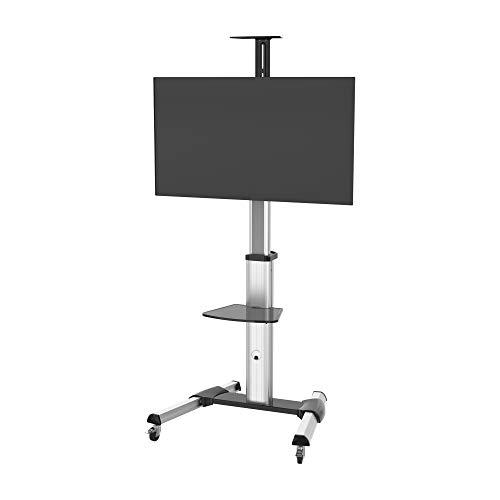 PureMounts PDS-0001C Single Screen TV Standfuß, VESA: bis 600x400 mm silbergrau/schwarz