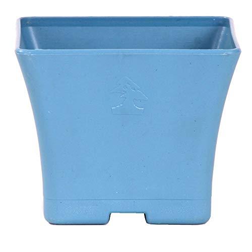 Bonsai - cascadeschaal hoekig 10 x 10 x 8 cm, grijsblauw, kunststof 50023