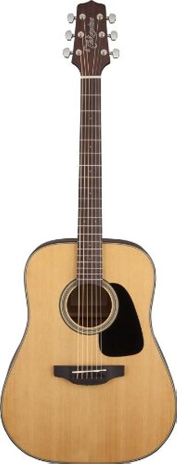 退却伸ばす駅Takamine タカミネ GD10-NS アコースティックギター アコースティックギター アコギ ギター (並行輸入)