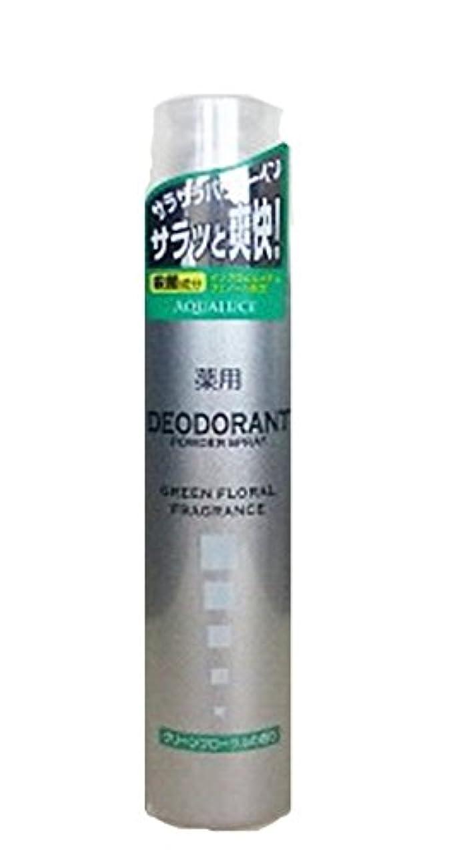 嵐が丘経験的好戦的なアクアルーチェ 薬用デオドラントスプレー グリーンフローラルの香り 205g