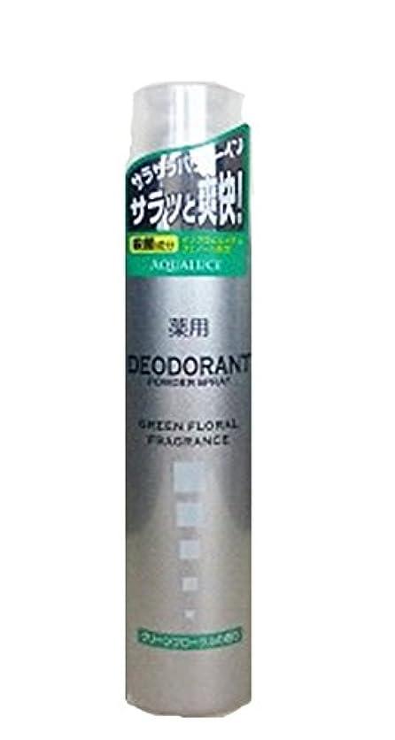 次耳葉っぱアクアルーチェ 薬用デオドラントスプレー グリーンフローラルの香り 205g