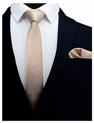 GUSLESON 2.4' Solid Tan Champagne Slim Tie For Men Skinny Necktie and Pocket Square Accessories Set (0754-09)