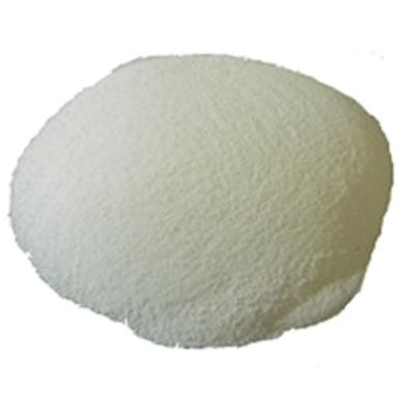 欠伸うれしい永続カリス成城 ソープの素 パウダータイプ 1kg