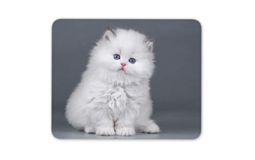 Adorable White Fluffy Kitten Mouse Mat Pad - Cute Funny Cat Computer Gift #16911