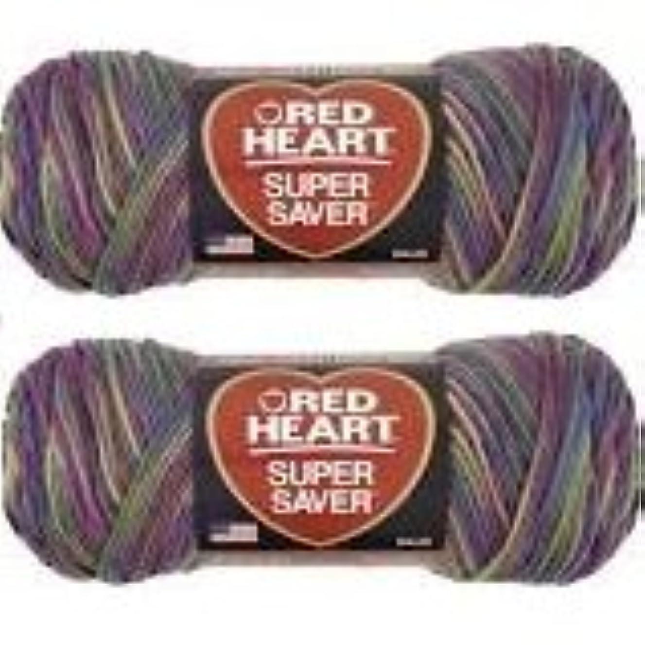 Bulk Buy: Red Heart Super Saver (2-pack) (Artist Print, 5 oz each skein)
