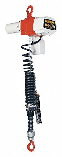 Purchase Electric Chain Hoist, 250 lb, 6 ft.