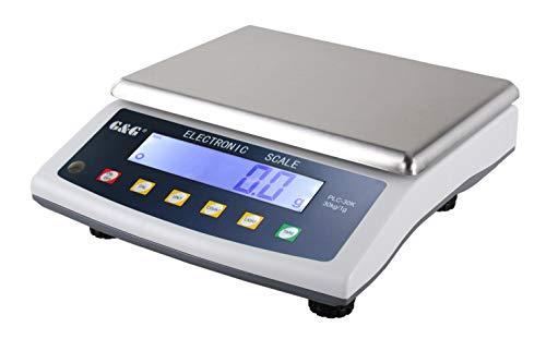 G&G - Báscula de precisión - Peso máximo: 30 kg / Granularidad: 1 g
