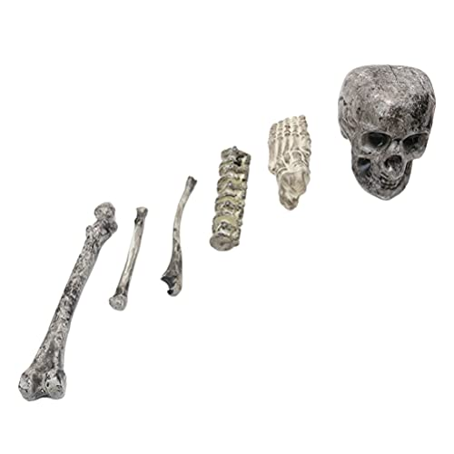ABOOFAN Estatua Del Cráneo de Halloween Huesos Del Esqueleto Del Cráneo Humano Figura Escultura de Halloween Accesorios de Escritorio Ornamentos para Halloween Casa Embrujada Decoración