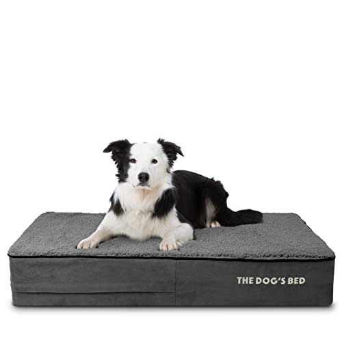 The Dog's Bed Orthopedic Dog Bed, Memory Foam,...