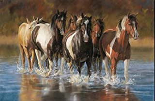 Northcott Naturescapes Unbridled Horses Panel 24 X 44 Cotton Fabric DP22459-44