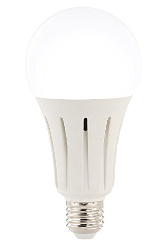 Luminea Tageslichtlampe: LED-Lampe E27, 15 Watt, 1350 Lumen, A+, tageslichtweiß 6.500 K (LED Leuchtmittel E27 kaltweiß)