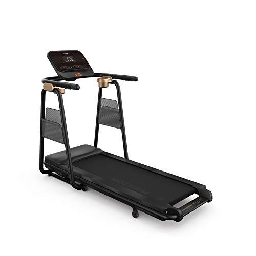Horizon Fitness Tapis ROULANT Horizon TT 5.0