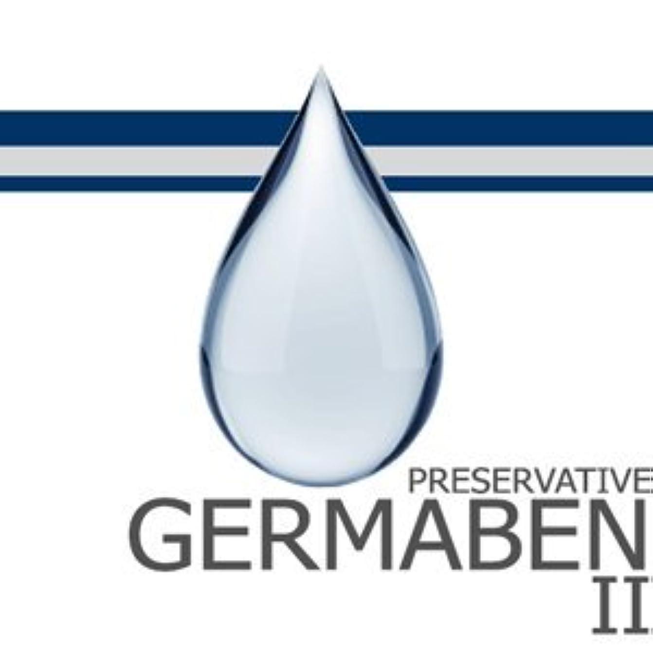 一時停止印象的な適切なgermaben II
