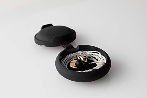 Final B1 Sound Isolating in-Ear Headphones Earphones with Dynamic and Balanced Armature Drivers