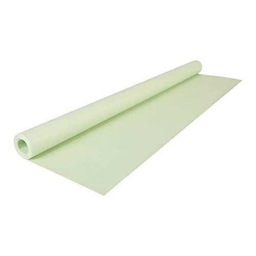 Clairefontaine 195721C Rolle (färbiges Kraftpapier, 10 x 0,7 m, 65 g, PEFC, ideal für Ihre Bastelprojekte) 1 Stück grün