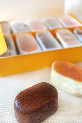 【送料込】豆チーズ・豆チョコ 詰め合わせ(各5個) 箱入り国 100%国産大豆の豆乳使用【冷凍便】