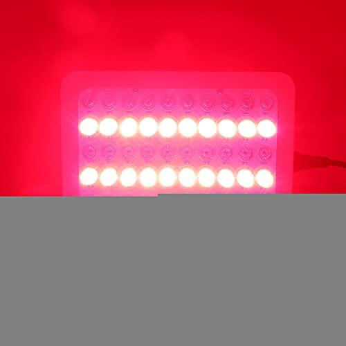 300W Mini lámpara de belleza LED profesional Luz infrarroja Terapia de luz roja Rejuvenecimiento de la piel Eliminación de arrugas Máquina de belleza(UE)