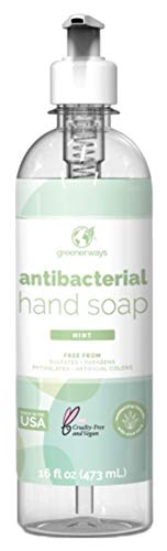 Greenerways Antibacterial Hand Soap | Made in USA | Mint Liquid Hand Soap with Pump and Soothing Aloe Vera | Sulfate-Free, Paraben-Free, Cruelty-Free, Vegan Hand Wash (16 Fl Oz (1 Pack) - Mint)