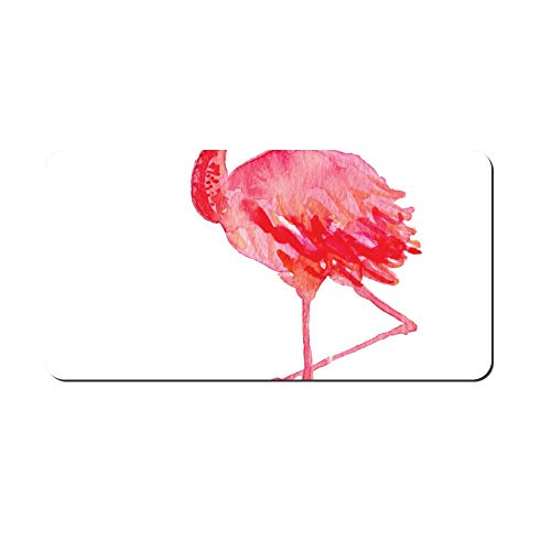 Watercolored Flamingo Print Front Vanity Plate,Aluminum Car Tag Holder,Licesen Plate Frame,Auto Accessory Gifts
