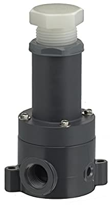 Plast-O-Matic RVDTM100T-PV Relief Valve from Plast-O-Matic Valves, Inc