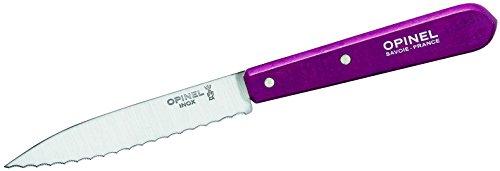 Opinel Küchenmesser No. 113, rostfreier Sandvik-Stahl, Sägezahnung, hellgrüner Buchenholzgriff Kochmesser, Mehrfarbig, One Size